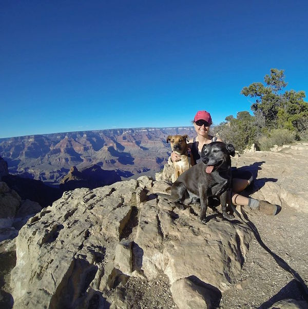 dogs-grand-canyon-south-rim