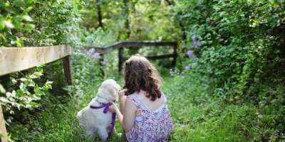 golden-retriever-puppy-and-kid