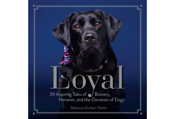 loyal-book-cover
