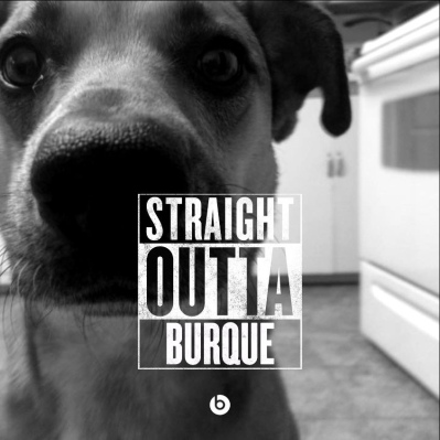 straight-outta-burque-dog